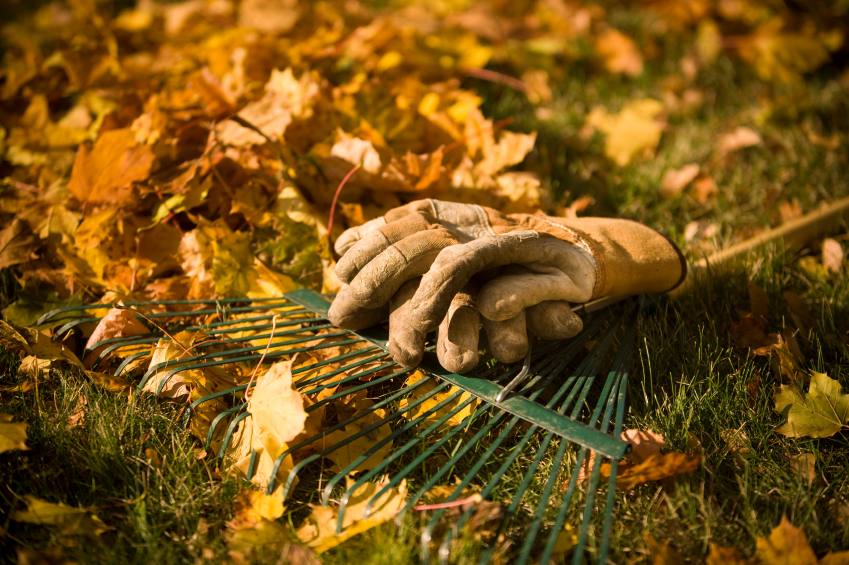 Prepare Your Lawn and Garden for Seasons Ahead