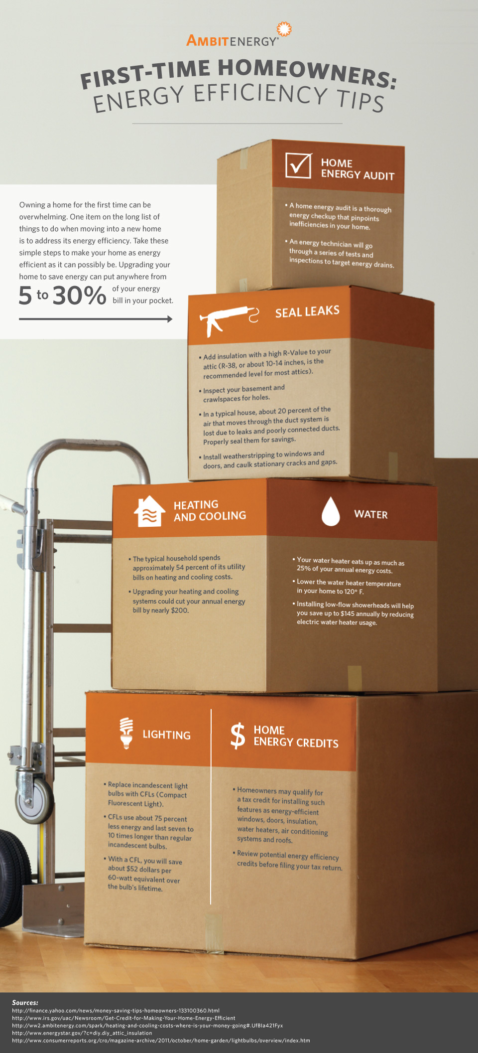 Infographic: First-Time Homeowners: Energy Tips & Extra Savings | Ambit Energy