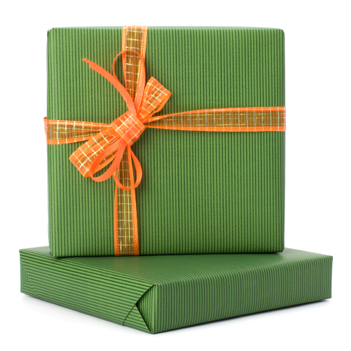 Energy Efficient Gift Guide for Yearlong Savings