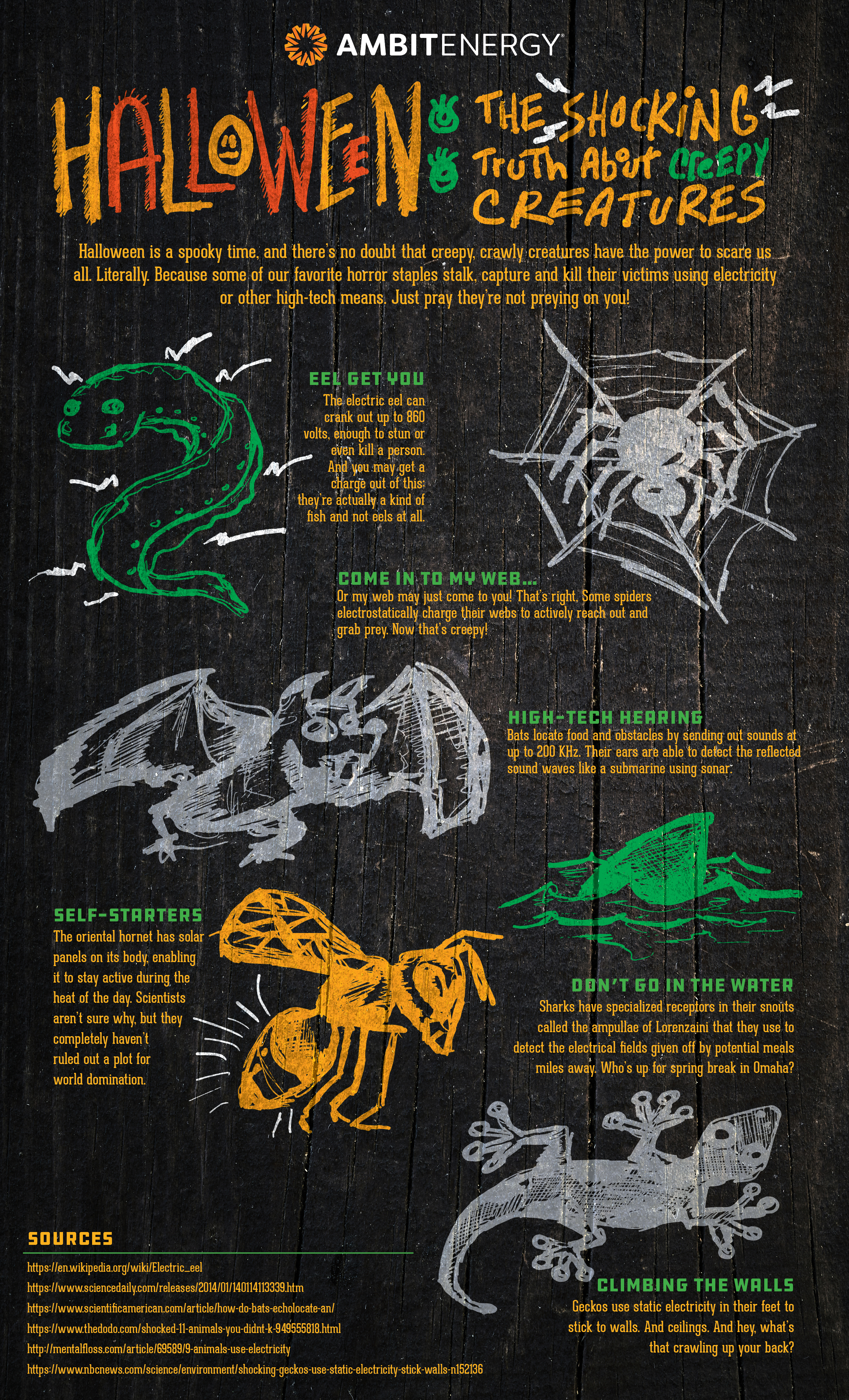 Infographic: Halloween: The Shocking Truth About Creepy Creatures