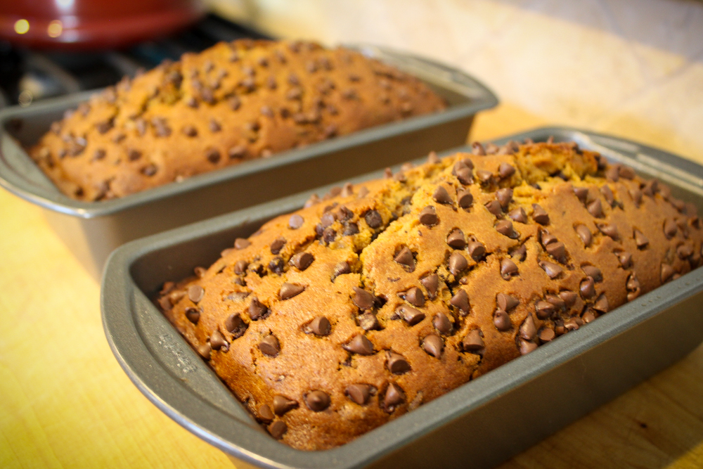 Ambit Cooks | Chocolate Chip Pumpkin Bread