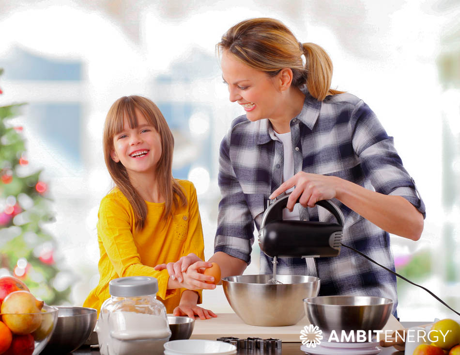 Ambit Reviews: Best Small Kitchen Appliances for the Holidays