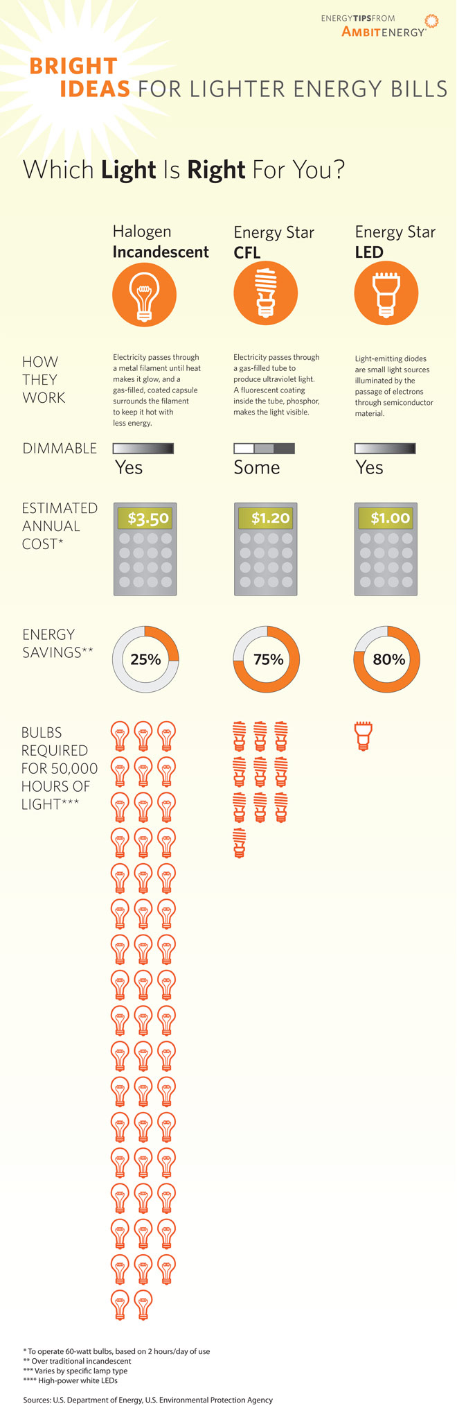 Infographic: Which Light is Right for You?