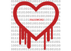 Squash the Heartbleed Bug & Protect Personal Information