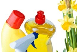 How to Save Time and Money on Spring Cleaning